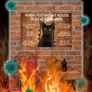 Cat when visiting my house please remember poster- A2