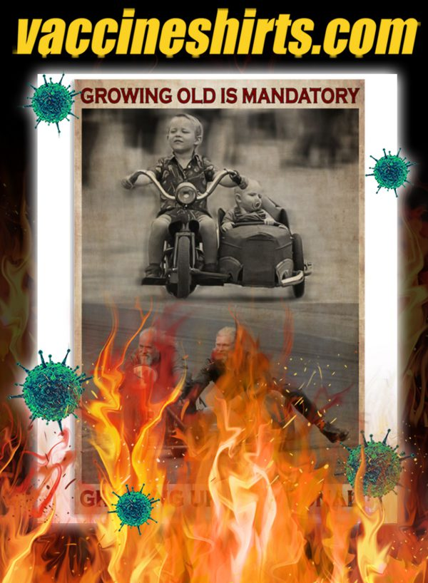 Sidecar growing old is mandatory growing up is optional poster