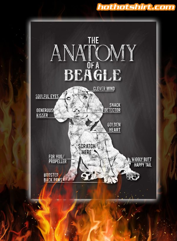 The Anatomy Of A Beagle Dog Poster