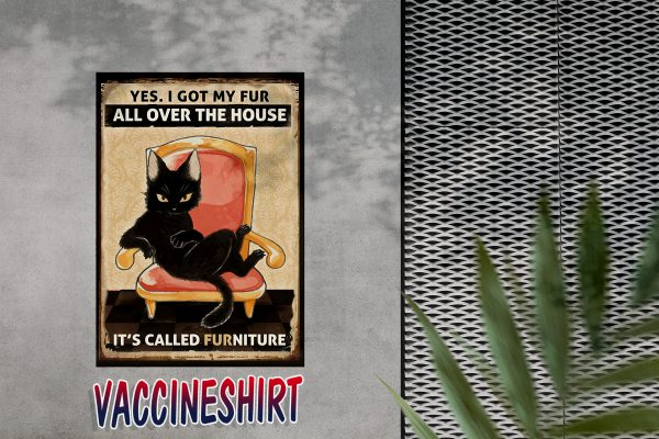 Black cat yes i got my fur all over the house it's called furniture poster